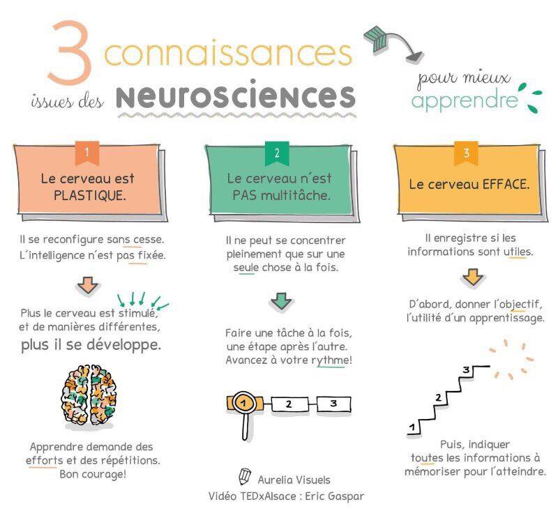 sketchnote conf TEDx neurosciences